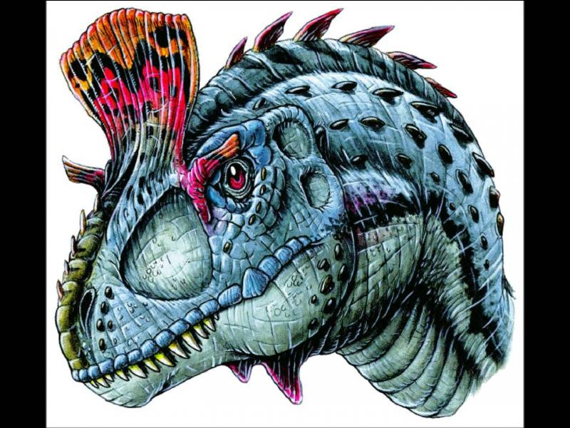 Avant qu'on lui choisisse un nom scientifique, le cryolophosaure fut nommé provisoirement :