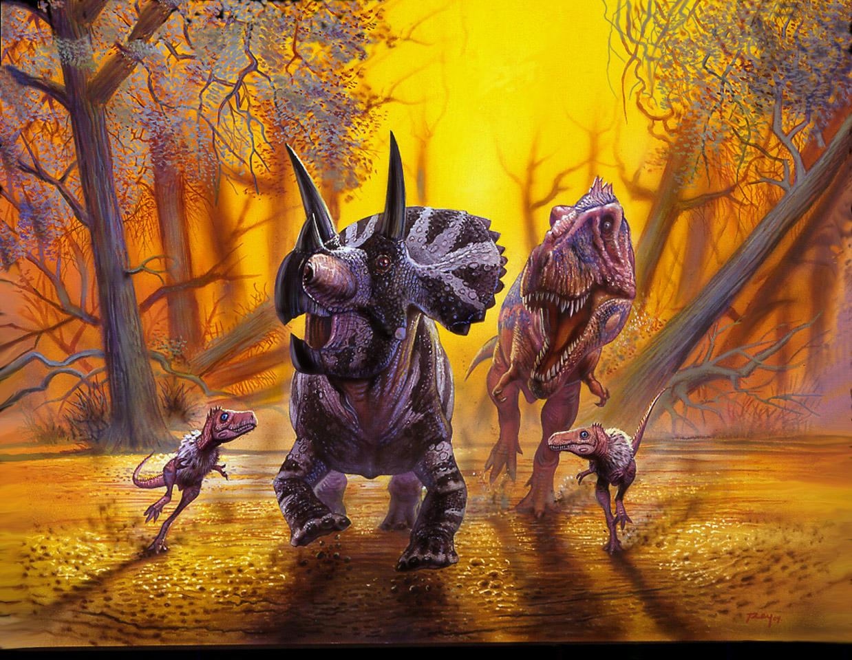 Anecdotes (2) : dinosaure & cie