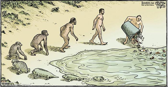 Quelle découverte paléontologique est venue confirmer la théorie de l'évolution par la sélection naturelle de Darwin peu de temps après sa publication ?