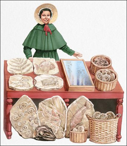 Mary Anning (1799-1847) est l'une des plus grandes chasseuses de fossiles de l'histoire. Elle est connue pour être :