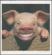 Que demande un douanier à un cochon qui passe la frontière ?