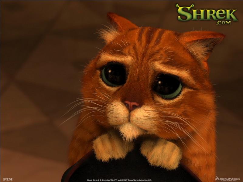 """Dans """"Shrek"""", comment s'appelle le petit chat orange ?"""