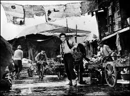 """Ce film d'Elia Kazan de 1964, retrace le voyage, de l'empire ottoman à """"l'empire américain"""", d'un jeune grec."""