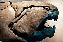 À quelle période a vécu Dunkleosteus ?