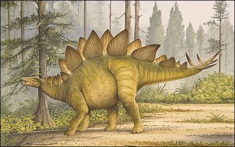 Sur quel continent a vécu le stégosaure ?