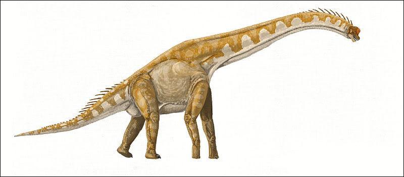 Sur quel continent a vécu le giraffatitan ?
