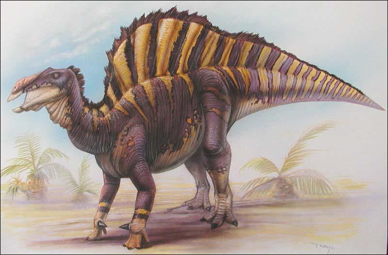 Sur quel continent a vécu l'ouranosaure ?