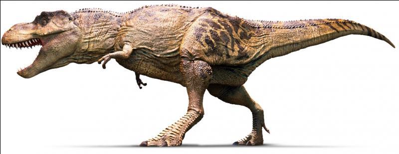 Sur quel continent a vécu le tyrannosaure ?
