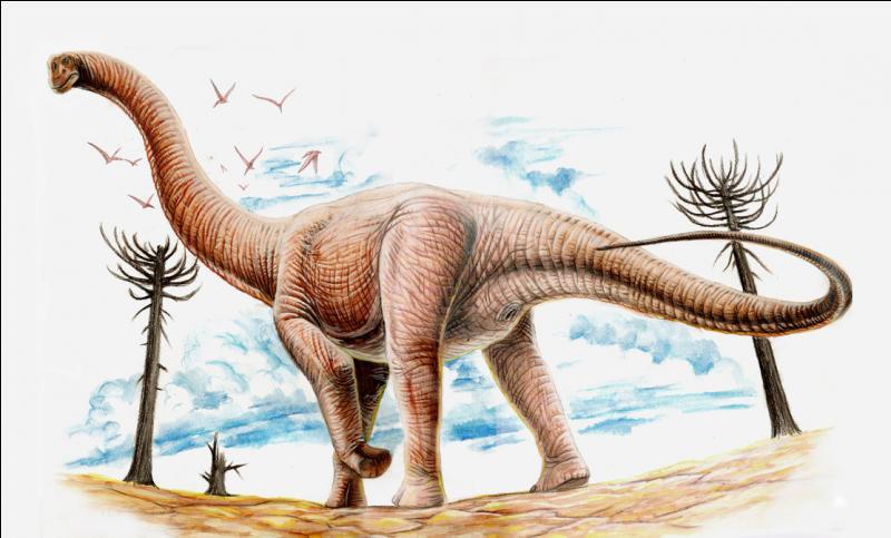 Sur quel continent a vécu l'argentinosaure ?
