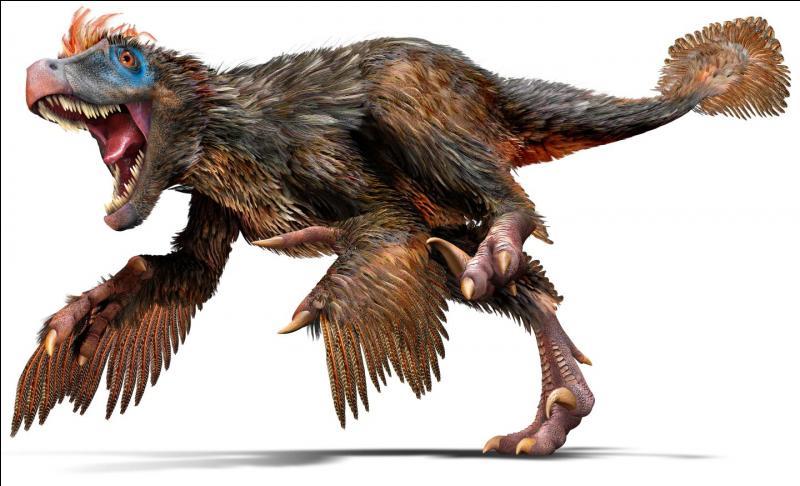 Sur quel continent a vécu le vélociraptor ?