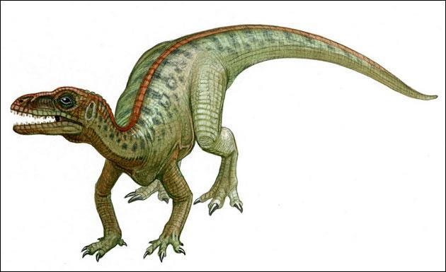 Sur quel continent a vécu l'eoraptor ?