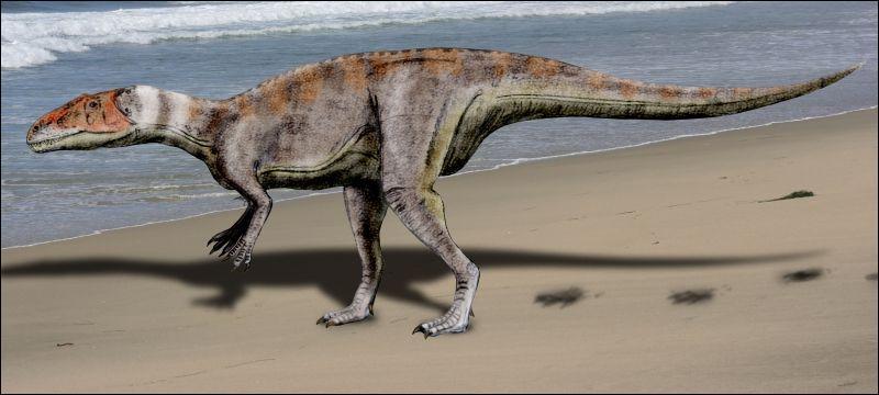 Sur quel continent a vécu le mégalosaure ?