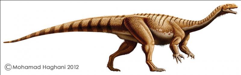 Où a-t-on découvert le plus de platéosaures ?