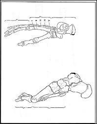 Le nom latin « calcaneum » signifie « talon » et désigne un os du pied.