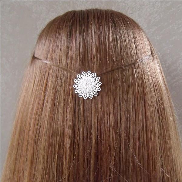 Quel poids un cheveu humain peut-il supporter ?