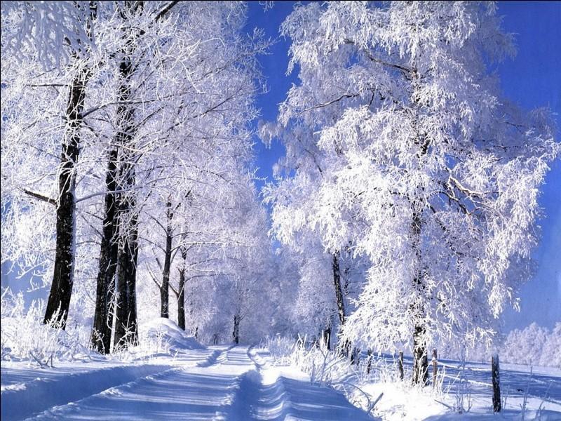 Ser de color...como la nieve.