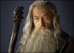 Quel surnom n'est pas donné à Gandalf ?