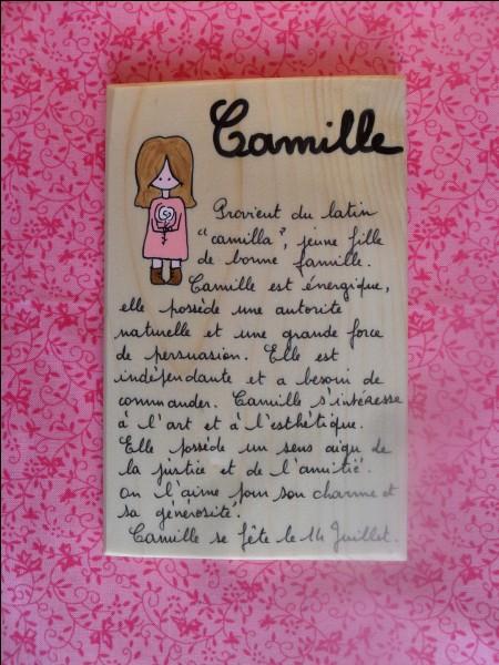 Camille - Qui les camillus assistaient-ils, lors des sacrifices ?