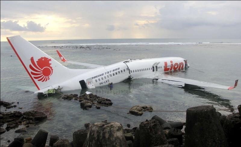 Pourquoi un avion se crashe-t-il généralement ?