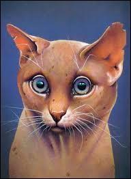 Quel est ce chat étrange qui donne des conseils à Œil de Geai ?