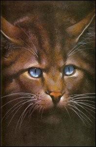 Quel est ce chat mauvais, ambitieux, et ayant une sœur guérisseuse ?