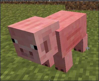 Avec quoi peut-on monter le cochon en le dirigeant ?