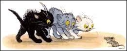 Quelle est la couleur d'un chat qui porte malheur d'après une célèbre superstition ?