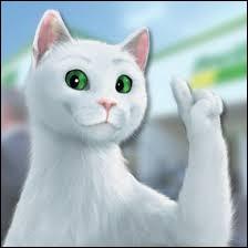 Quelle marque possède comme mascotte ce chat blanc aux yeux verts ?