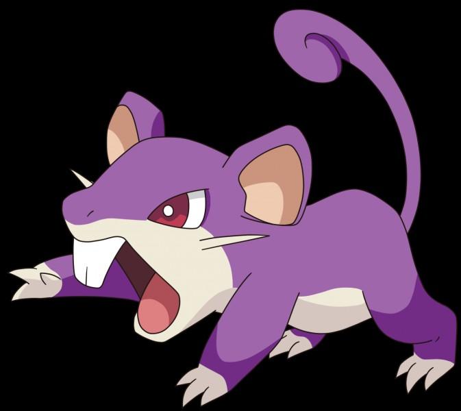 À partir de quel niveau Rattata peut-il mordre ?