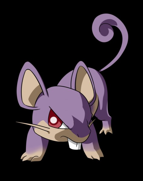 Combien d'évolutions Rattata a-t-il ?