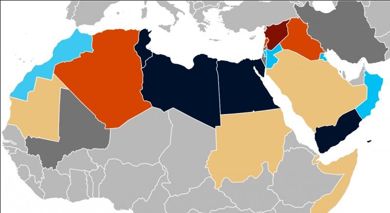 Comment est appelé l'ensemble de contestations et de révolutions (telle que la révolution du jasmin en Tunisie) qui touche le Maghreb depuis 2010 ?