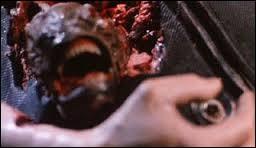 """À qui doit-on le film """"Piranha 2 : Les Tueurs volants"""" ?"""