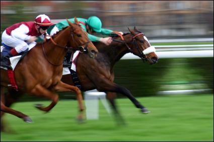 Le cheval dont le cavalier est habillé en vert a parcouru 1/2 de la piste en tête. L'autre cavalier en a parcouru 1/4 en tête. La piste mesure 800 mètres. Comment reste-t-il de mètres à parcourir ?