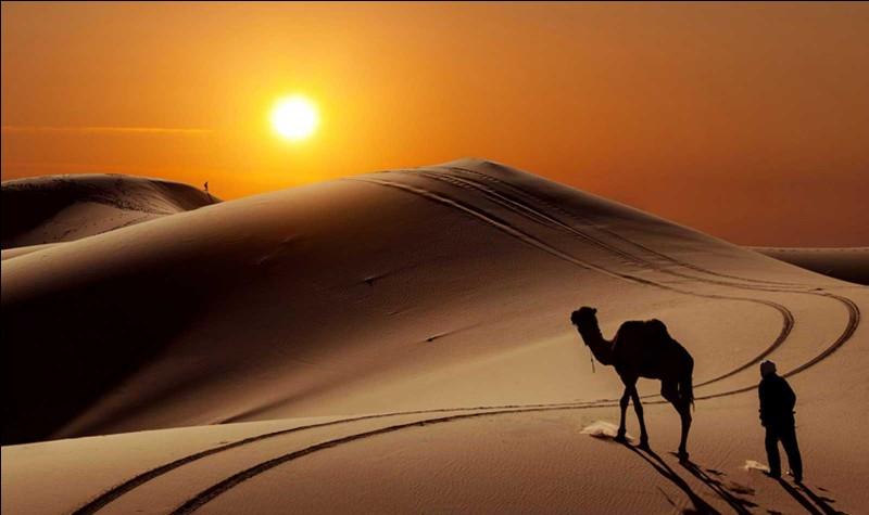 Le Sahara s'est formé il y a :