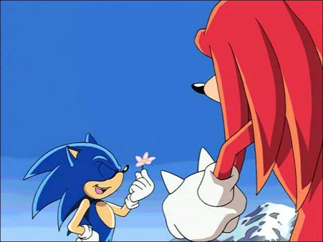 Pourquoi Knuckles a du mal à supporter Sonic ?