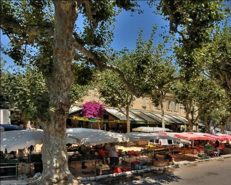 Chanson : Trouvez le mot qui manque dans cette chanson de Gilbert Bécaud ''Les Marchés de Provence'' : ''Il y a tout au long des marchés de ProvenceQui sentent, le matin, la mer et le MidiDes parfums de fenouil, melon et ...