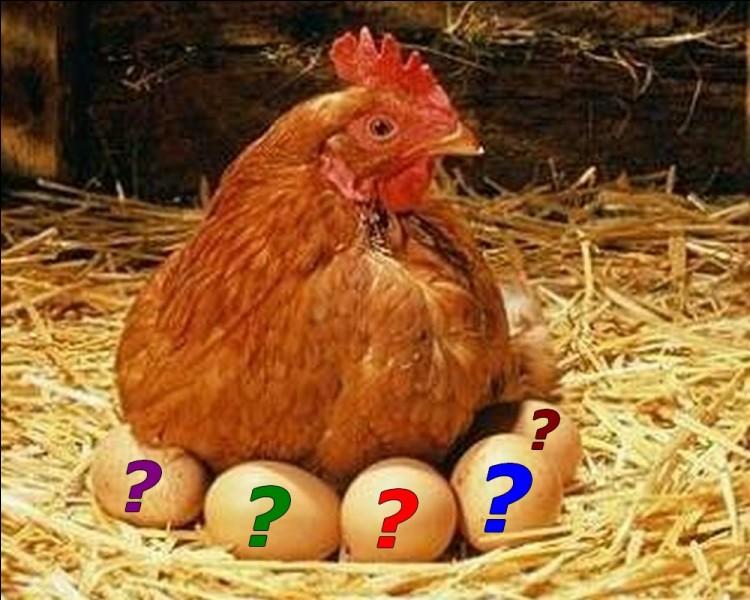Alimentation : Combien d'œufs consomme en moyenne un Français en un an ?