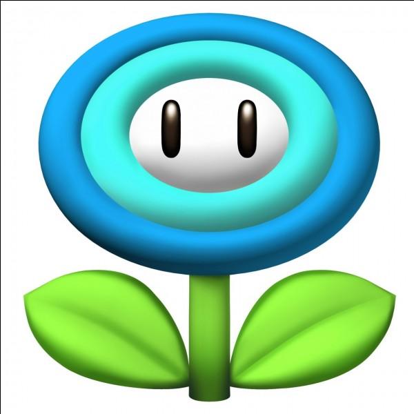 """À quoi sert la fleur de glace de """"Mario Wii"""" ?"""