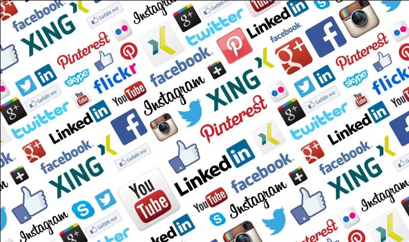 Quel est ton résau social favori ?