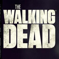 The Walking Dead : saisons 1 à 6 (VF/VO) - 2016