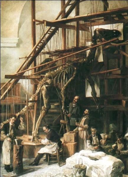 À la même époque, d'autres découvertes ont été faites en Europe. Quel paléontologue fut appelé pour monter les squelettes d'iguanodons de Bernissart, qu'on peut observer au Muséum d'histoire naturelle de Bruxelles ?