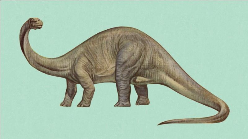 Othniel Charles Marsh se trompait aussi parfois. En 1879, il décrit le brontosaure en mélangeant les os de deux dinosaures :