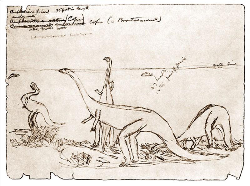 Edward Drinker Cope décrit 56 espèces de dinosaures. Travailleur infatigable, il publia le nombre incroyable d'environ...