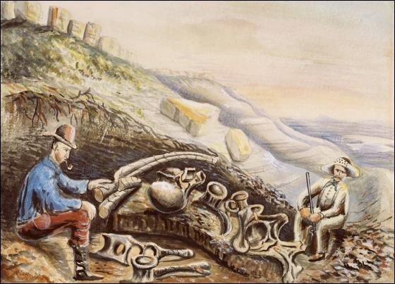 Mash et Cope déterraient rarement les fossiles qu'ils étudiaient. Ils faisaient le plus souvent appel à des chasseurs de fossiles et à des paléontologues de terrain. L'un d'entre eux peignait aussi de nombreuses toiles qui montrent ce qu'était la chasse aux fossiles dans l'Ouest américain. Il s'agit de...