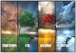 Quelle saison vous correspond le plus ?