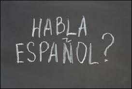 Lequel de ces pays n'a pas la langue espagnole comme langue officielle ?