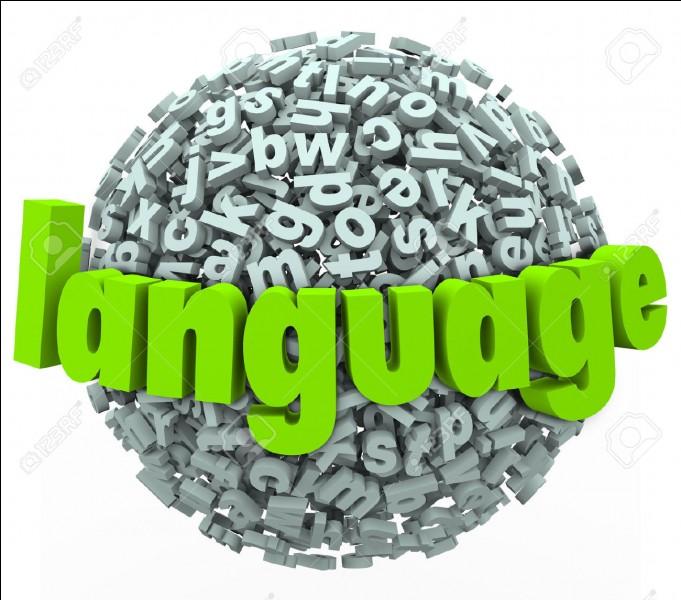 Quelle est la langue des pratiquants de l'islam ?