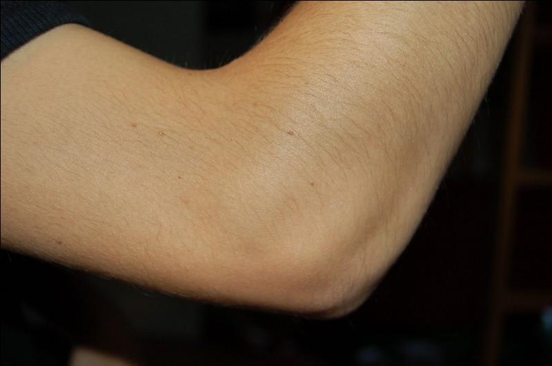Dans les muscles cités lesquels permettent l'extension du coude ?