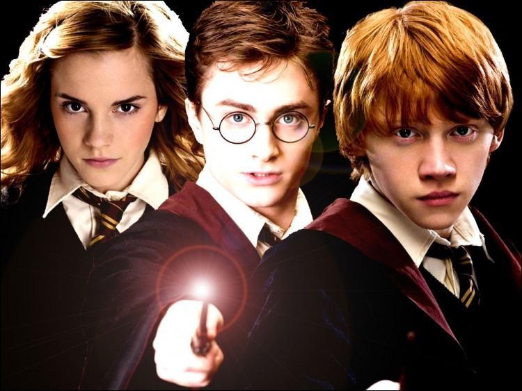 En plus de Harry, de Ron et d'Hermione, qui lutte contre les forces de Mal à cet endroit ?