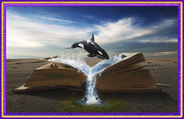 Quel est le titre de ce livre de Jules Verne ?